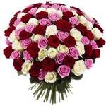 Букет Элитные разноцветные розы, 101 роза