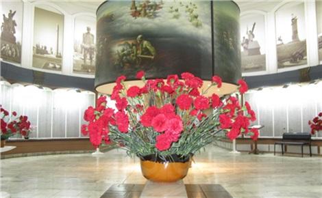 Обзорная экскурсия по музею и площади Победы