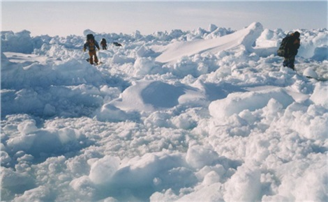 Манящая Арктика