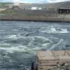 Из-за заполнения Богучанской ГЭС придется изменить маршрут зимника вЭвенкии