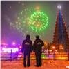ВКрасноярске завершился опрос овозможном переносе главной ёлки