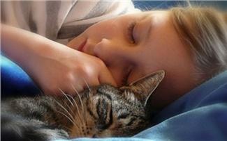 Сонный ликбез