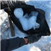 ВНорильске нашли рюкзак снаркотиками на60млн рублей