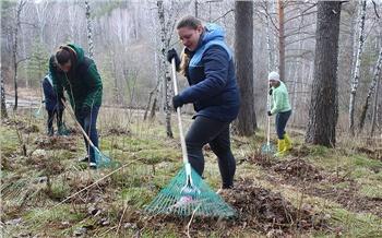 Репортаж изсоцсетей: Чистый Красноярск