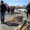 Вкрасноярском сквере депутаты высадили новые деревья (видео)