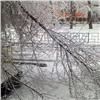 Майский снегопад вКрасноярске стал уникальным завсю историю наблюдений