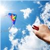 РУСАЛ приглашает красноярцев начемпионат позапуску воздушных змеев