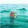 Спасатели отговорили группу подростков отпрыжков смоста вЕнисей