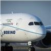 Вкрасноярском аэропорту сел самолет сосработавшим датчиком неисправности