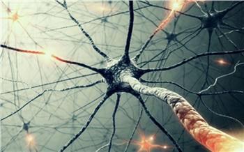 Нейросети: как умные машины меняют мир