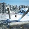 Красноярский зоопарк готовится креконструкции ивозвращению медведя Седова