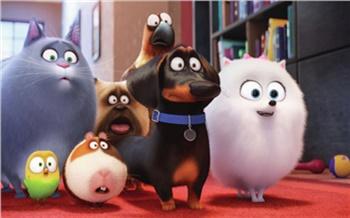 «Тайная жизнь домашних животных»— секрет Полишинеля
