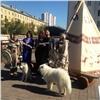 ВКрасноярске стартует Всероссийский фестиваль юного зрителя «Язык мира»