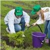 Вкрасноярском зоопарке «Зеленая дружина» высадила новые деревья