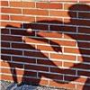 Объявлены результаты проверки пофакту убийства красноярским школьником сверстника