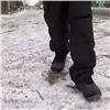 ВАбакане кондуктор маршрутки оставил школьника без денег напроезд (видео)