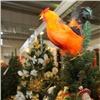 ВКрасноярске начала работу рождественская ярмарка для всей семьи