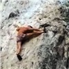«Дедушка человека-паука»: Красноярский столбист поразил отдыхающих вТаиланде