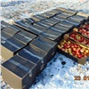 ВКрасноярске уничтожили более 700кг польских яблок