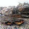 Почти две тонны польских яблок вКрасноярске пустили под бульдозер