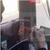 Найден инаказан игравший «втелефон» вдороге красноярский маршрутчик