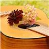 Красноярец украл гитару изцеркви