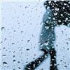 Зима вКрасноярске завершится дождем итеплом до+9