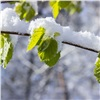 После прохладных выходных в Красноярск придет весна