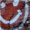 Вандалы закрасили древние петроглифы смайликами