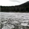 Река Мана вскрылась ото льда: красноярцев ждет красивый ледоход (видео)