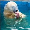 Красноярские белые медведи искупались седой: сезон водных процедур открыт