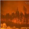 Гарь идым: под Железногорском выгорел лес