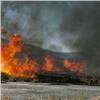 Экологи бьют тревогу из-за дыма отгорящей травы иотходов
