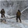 Поваленные снегом огромные деревья сделали непроходимой дорогу на«Столбах»