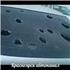 Мощный град вХакасии побил стекла машин (видео)