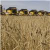Красноярские аграрии собрали первый миллион тонн зерна