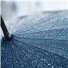 «Шквалистый ветер идождь»: красноярцев предупредили обопасностях погоды ввыходные
