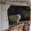 Эксперты: печи вчастных домах загрязняют красноярский воздух