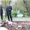 Вкрасноярском дворе наместе свалки высадят деревья