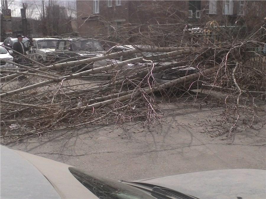 Ветер сорвал крышу дома игоняет грязные листья поКрасноярску