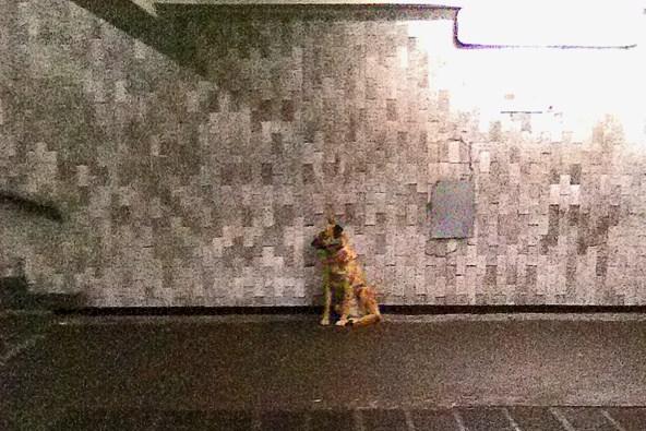метро Каховская.