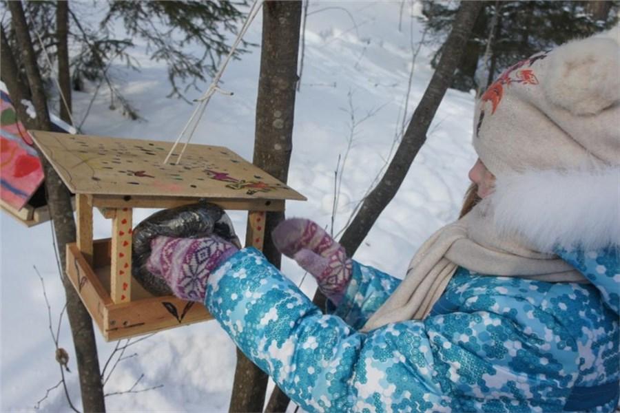 экономичный фото с кормушкой для птиц зимой с детьми признается, что